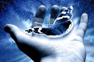Притча: Мудрец и бабочка